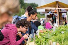 Umweltfestival2015_Meile_klein2