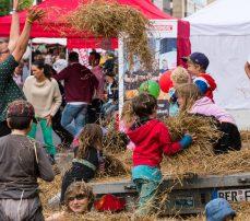 Umweltfestival_Toben-im-Heu